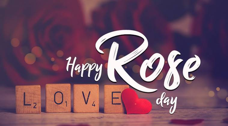Rose day wishes, Happy Rose Day Images, whats app status for Rose day, best rose day images,