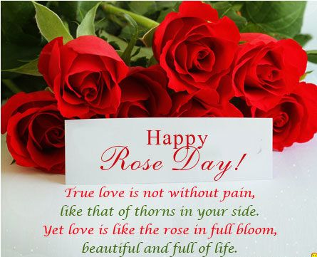 Rose day wishes, Happy Rose Day Images, whats app status for Rose day, best rose day images, rose day wishes 2021 images, rose day best greetings images