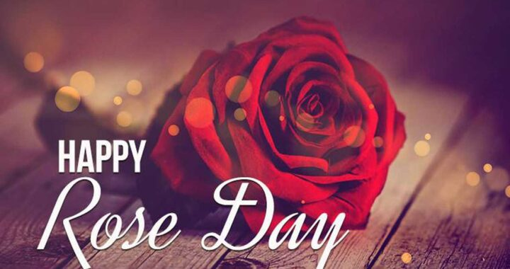 Rose day wishes, Happy Rose Day Images, whats app status for Rose day, best rose day images, rose day wishes 2021 images, rose day best greetings images, rose day 2021 images, rose day shayari images, latest images for rose day, rose day 2021, rose day, rose day wishes images for girlfriend, Rose day wishes images for Boyfriend, new rose day images, Happy Rose day quotes Lets download Happy Rose day images for your lovely girlfriend... in this post we provide you best images for Rose day wishes. whats app status for Rose day, best rose day images, rose day wishes 2021 images, rose day best greetings images, latest images for rose day,
