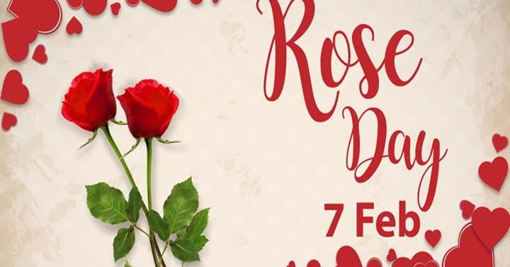 Best Hindi Status Rose Day 2021, Rose Day 2021 Images, Shayari, Quotes, Rose Day Message Status 2021